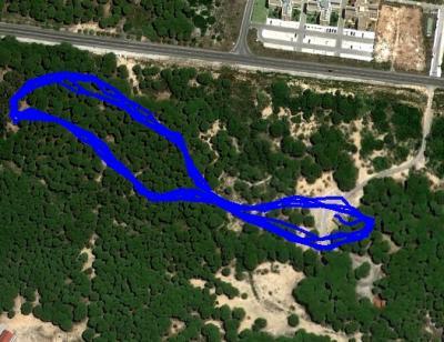 20111213181945-mapa-cross-navidad-bnr.jpg